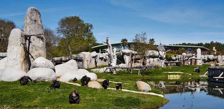 Zoo de la Palmyre situé à quelques minutes de Port Maubert