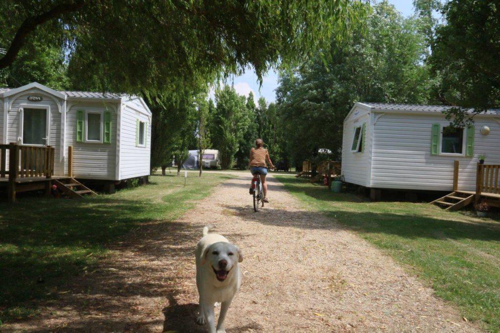 Allée de mobil-home au camping Port Maubert